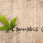 Cannabis Oel