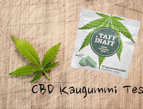 Cannabis Kaugummi Test & Erfahrungen – Taff Inaff im Test