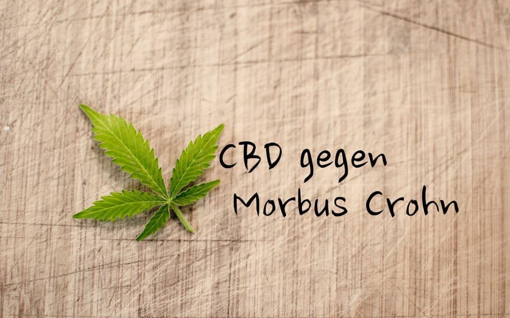 CBD gegen Morbus Crohn