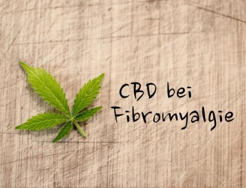 CBD bei Fibromyalgie – Hilfe bei der chronischen Schmerzwahrnehmung?