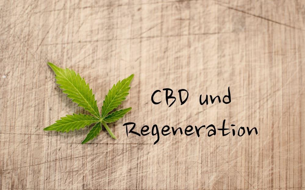 CBD unterstützt die Regeneration bei Sport
