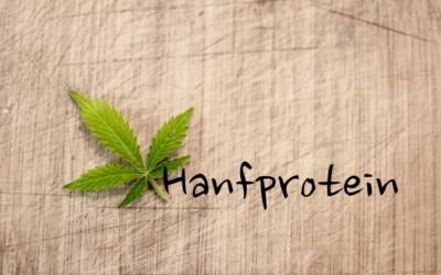 Hanfprotein Erfahrungen