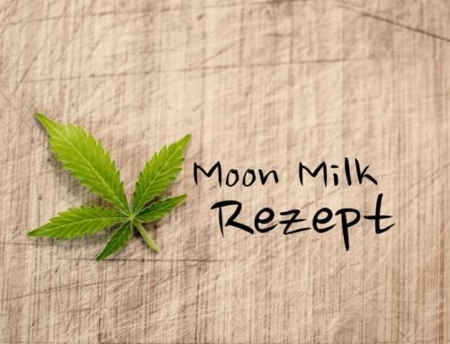 Moon Milk mit CBD Rezept – Der leckere Schlaftrunk
