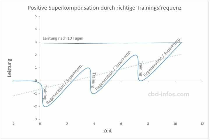 positive Superkompensation