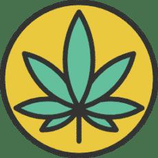 CBD-Öl-Samen