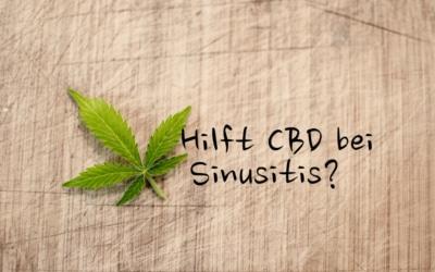 CBD bei Sinusitits Nebenhöhlenentzündung