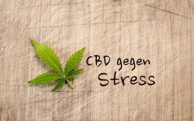 CBD gegen Stress