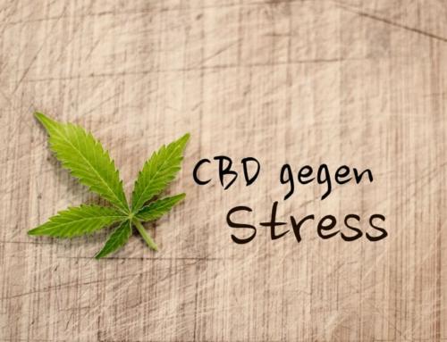 CBD gegen Stress – Wir zeigen dir was wirklich hilft!
