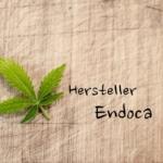 Unsere Erfahrungen mit dem CBD Hersteller Endoca