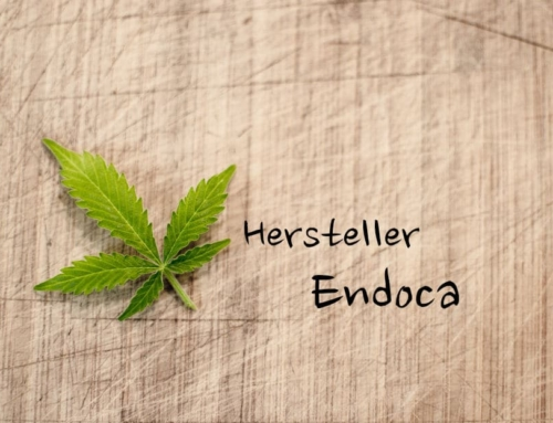 Endoca Erfahrungen – Wie gut schneiden die Produkte im Test ab?