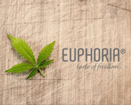 Euphoria-CBD-Erfahrungen