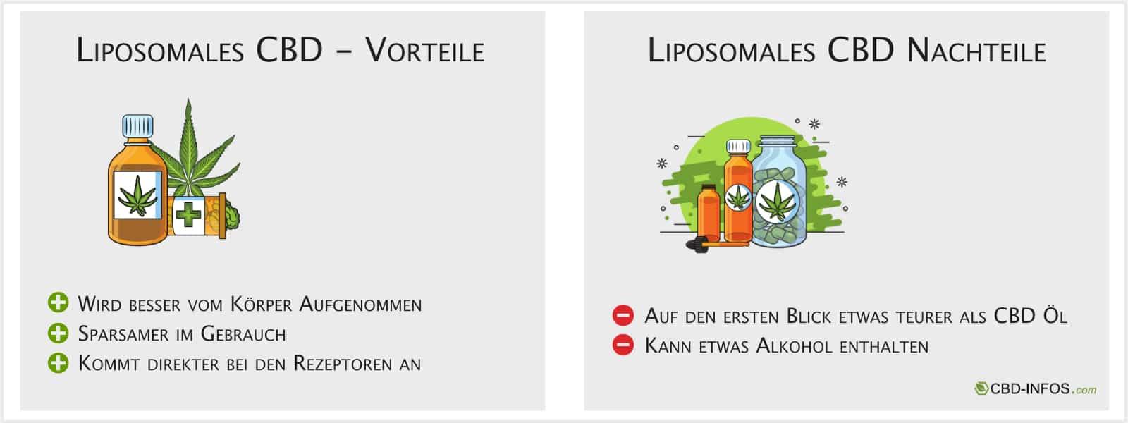 Infografik Liposomales CBD
