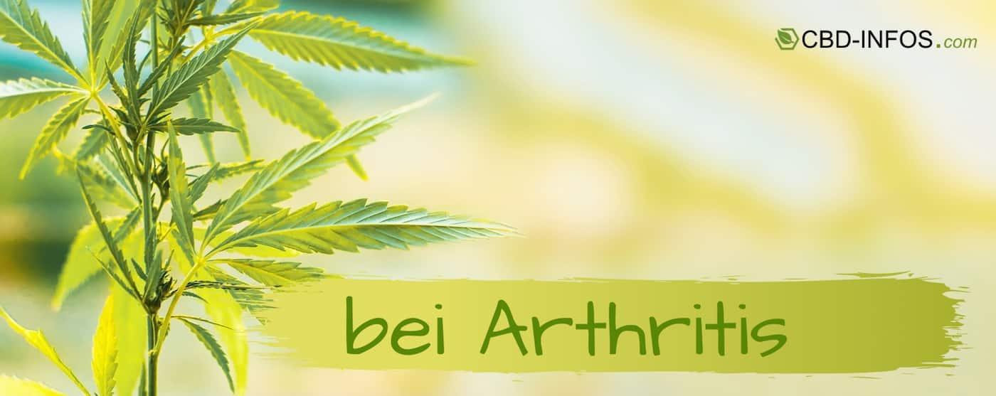 CBD Öl Erfahrungen bei Arthritis