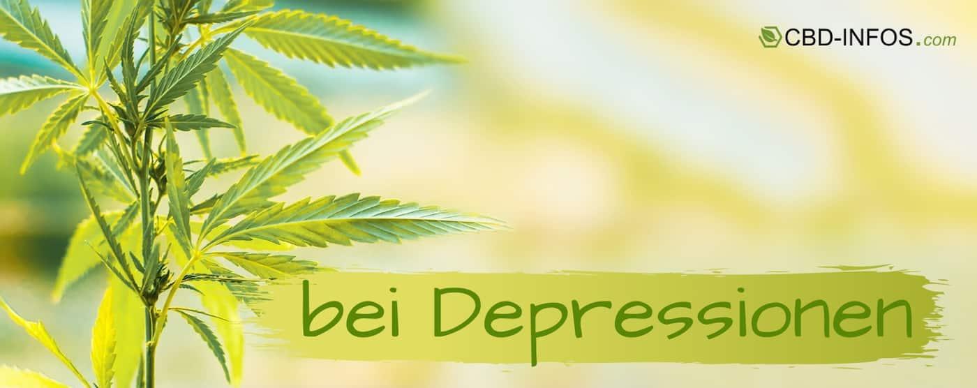 CBD Öl Erfahrungen gegen Depressionen