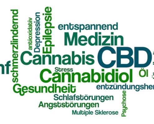 CBD bei Epilepsie