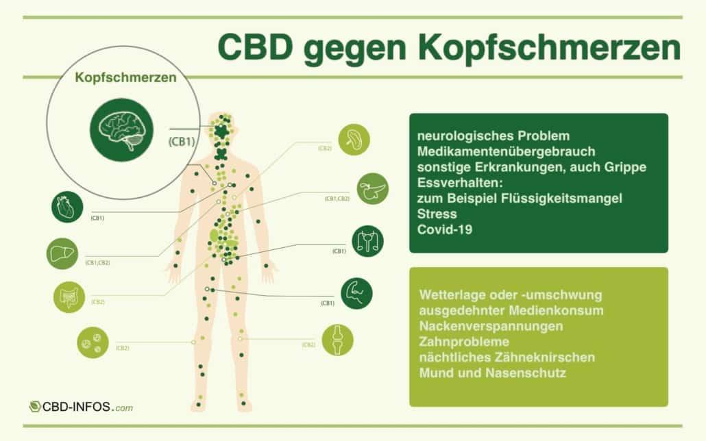 Infografik zu CBD gegen Kopfschmerzen