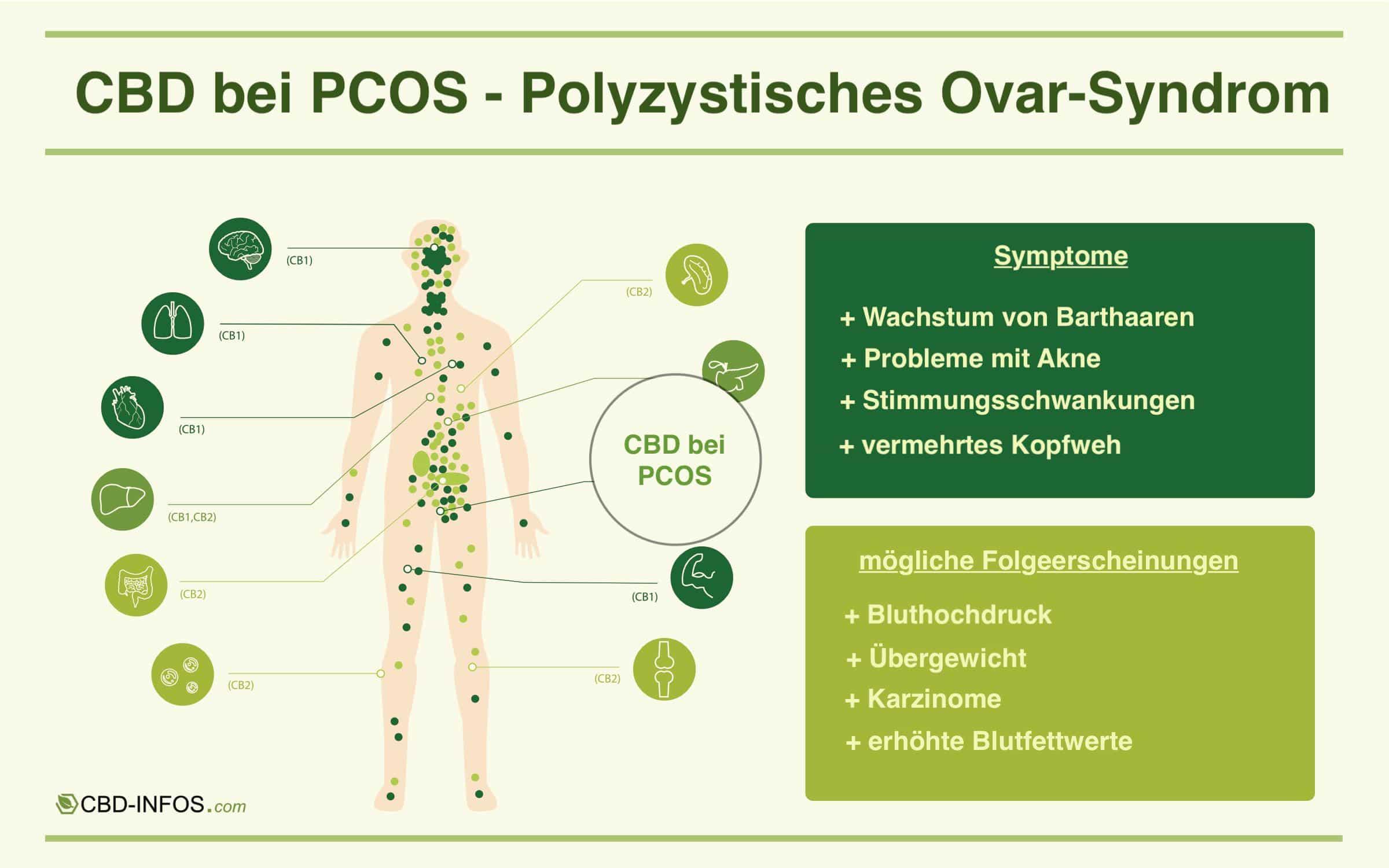 CBD gegen PCOS Infografik