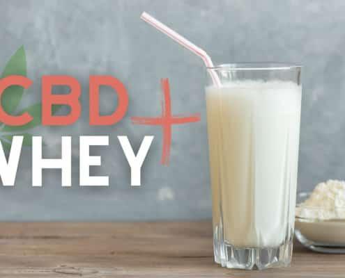 CBD Whey Protein Test